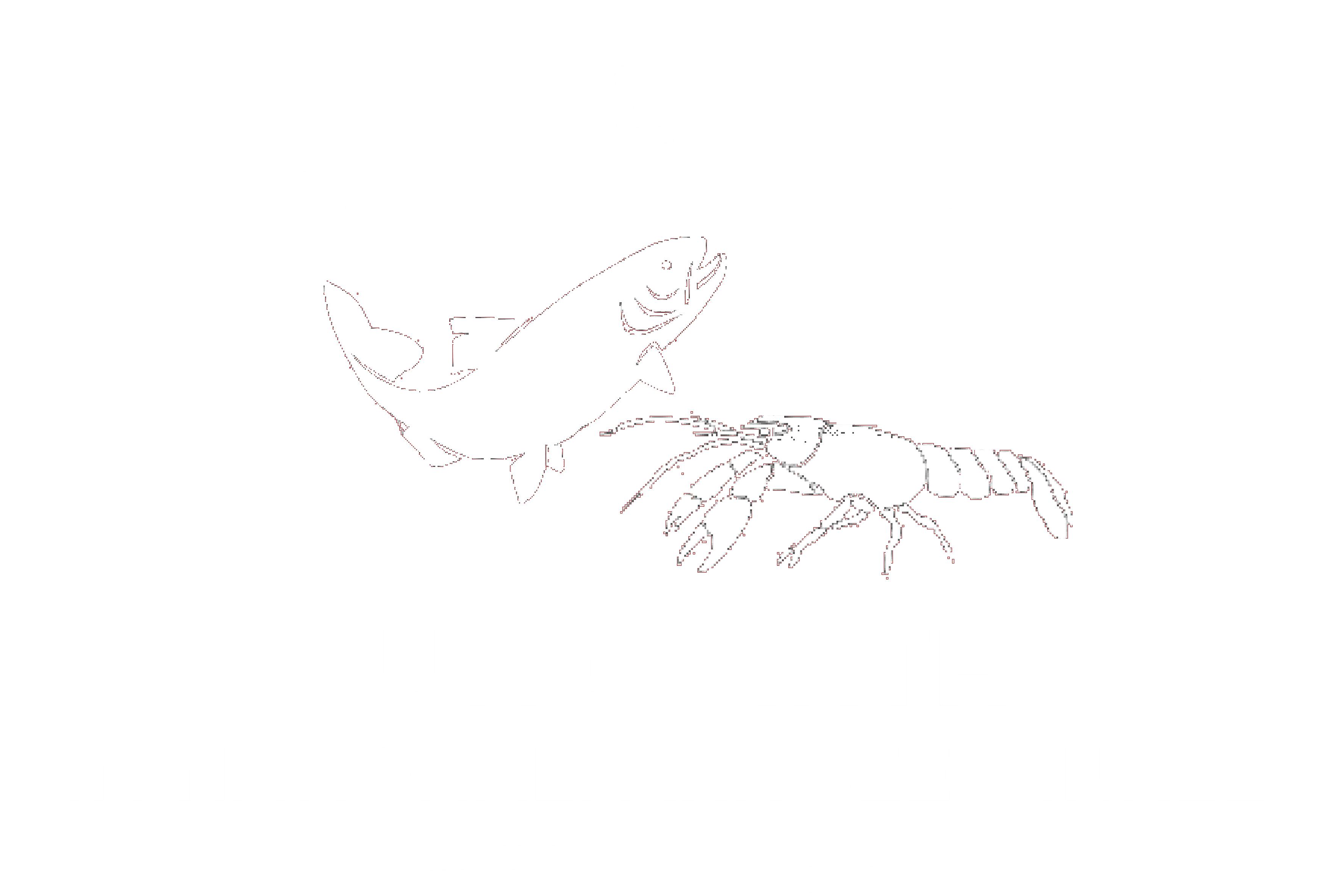 Fisch & Edelkrebszucht Jungwirth